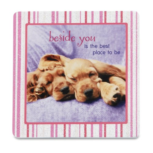 Shaded pink by h2z 27026beside you dog plaque 3–1/5,1cm