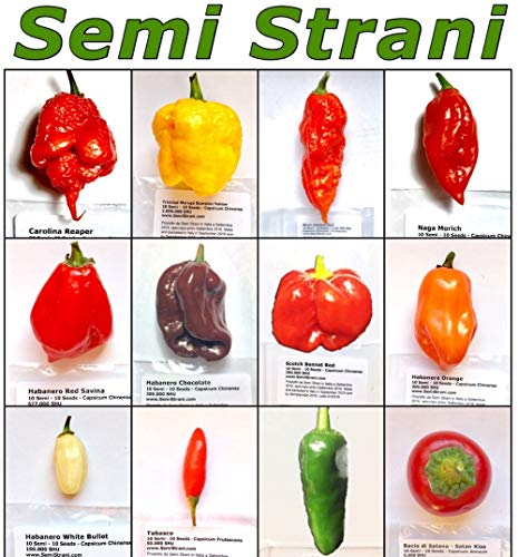 120 SAMEN DER BESTEN CHILI IN DER WELT - DIE CLASSISCHE KOLLEKTION: CAROLINA REAPER, TRINIDAD MORUGA SCORPION YELLOW,