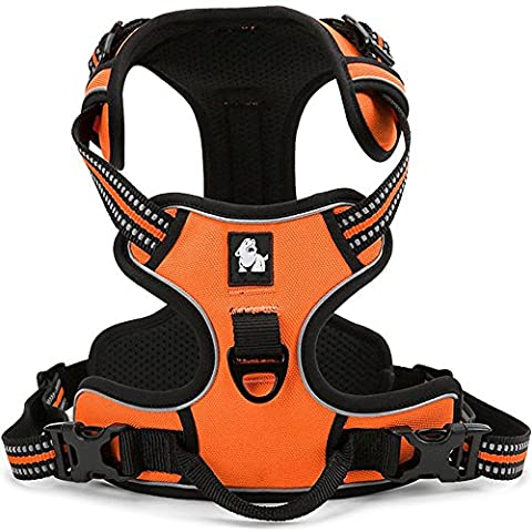 fiE FIT INTO EVERYWAY Side No Pull Dog Harness Outdoor Adventure 3M Reflective Pet Vest with Handle Adjustable Protective Nylon Walking Pet Harness Orange