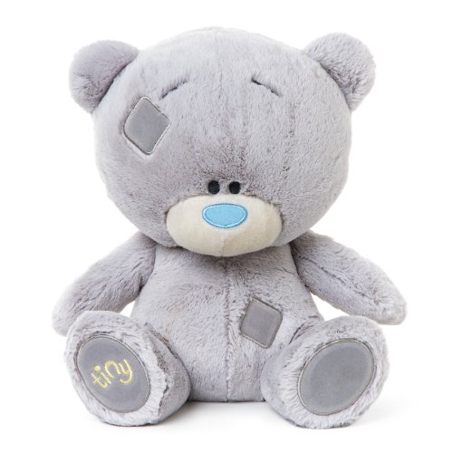 Me to You 9-inch Tiny Tatty Teddy