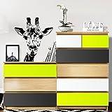 Grandora W5232 Möbelfolie 3-farbig passend für IKEA MALM Kommode Farbset 1: pastellgrün, dunkelgrau, weiß