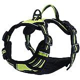 Einstellbare, nicht gezogene Hundegeschirre Haustierweste mit 3m reflektierendem, weich gepolstertem Schwerlastgriff für Training oder Gehen (L-Brust Größe: 27-32in, Grün)