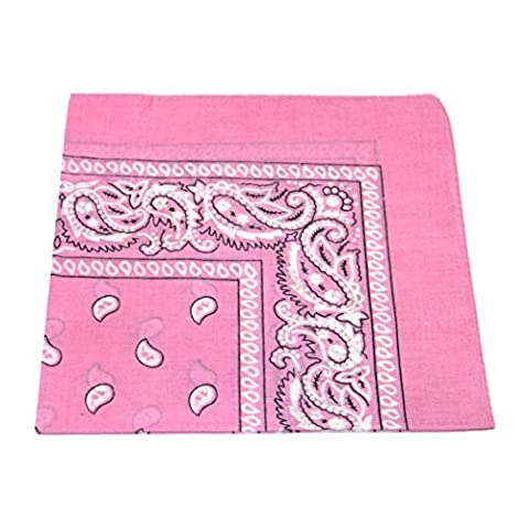 Paisley Pattern 100% Cotton Bandana for Pet Dogs (Baby