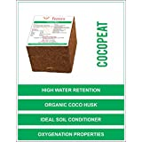 Femora Natural Organic Cocopeat Block - 600 GMS Expand up to 100 KG