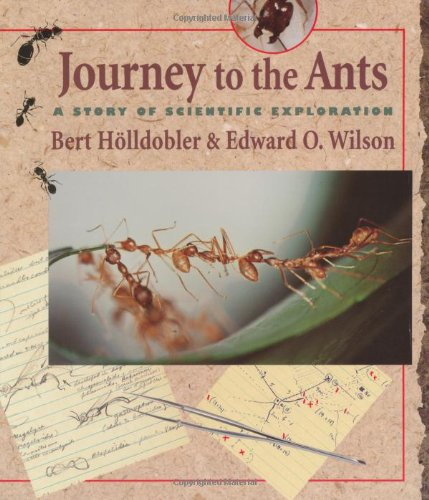 journey-to-the-ants