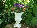 Pflanzschale, Blumenamphore,Blumenschale,Pflanztopf aus Gusseisen, antik-weiss patiniert