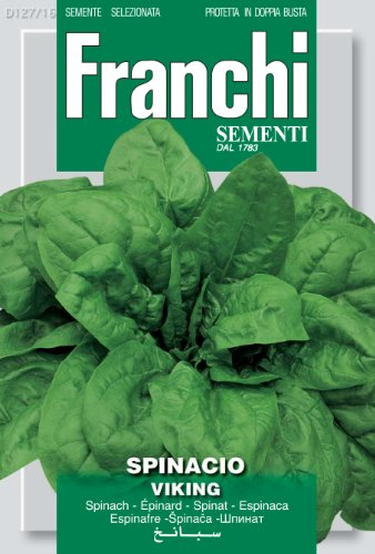 Seeds of Italy Franchi Graines d'épinard viking