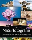 Naturfotografie: Landschaften, Pflanzen und Tiere gekonnt fotografieren