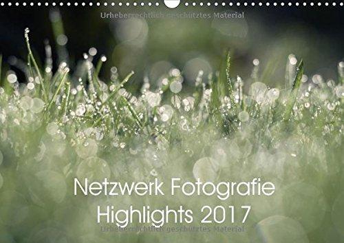 Netzwerk Fotografie Highlights 2017 (Wandkalender 2017 DIN A3 quer): Die besten Bilder des Jahres aus dem Netzwerk Fotografie (Monatskalender, 14 Seiten ) (CALVENDO Hobbys)