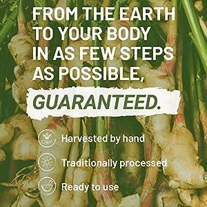Turmeric Curcumin 1000mg Capsules by Nutritrust®- Organic Curcumin & 95% Curcuminoids with Black Pepper Bioperine - 100% Pure for Optimal Results - Easy to Take Vegan Friendly Superfood Supplement