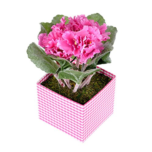 homescapes-artificial-african-violets-cerise-in-square-pot-lifelike-leaves-and-silk-flowers-replica-