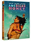American Honey - Andrea Arnold.
