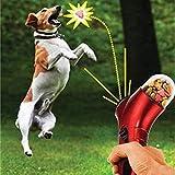 HCHD Dispensatore di Cibo per Animali Dispenser di Mangimi per Cani (Color : Rosso)