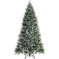 WeRChristmas Pre-Lit Edwardian Spruce Pre-Lit Multi-Function Christmas Tree, 2.1 m - 7 feet with 450-LED, Green