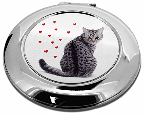 Silber gestromt Katze mit roten Herzen Make-up Rund Taschenspiegel Weihnachten Geschenk -
