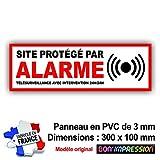 Panneau de Dissuasion SITE Protege par Alarme 300 x 100 mm en PVC + 4 Trous pour Fixation avec Texte : Télésurveillance avec Intervention 24H/24H (Panneau Alarme)...