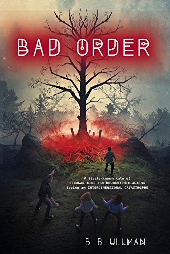 Bad Order (English Edition)
