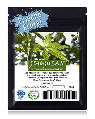 JIAOGULAN (Unsterblichkeitskraut) - Natürliche Wildsammlung | Feine Auslese | TOP-Qualität vom...