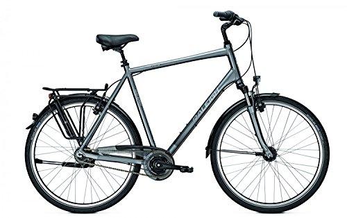 Raleigh Citybike UNICO XXL Herren bis 170 kg zugelassen div. Grössen, Rahmenhöhen:50;Farben:Torontogrey