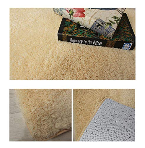 Uben Beige Area Rugs Anti-Skid Yoga Carpet for Living Room Rugs Faux Fleece Chair Cover Seat Pad Soft Fluffy Shaggy Area Rugs for Bedroom Sofa Floor -