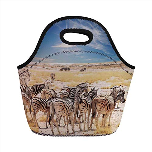 Portable Bento Lunch Bag,Wildlife Decor,Zebras in Savannah Desert Waterhole on Hot Day Africa Safari Adventure Land Print,Multi,for Kids Adult Thermal Insulated Tote Bags -