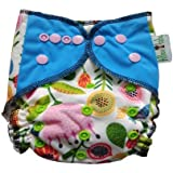 Allboutbaby Reusable All In One (Aio) Cloth Diaper For Heavy Absorbency With Organic And Stay Dry Insert - Mary's Garden