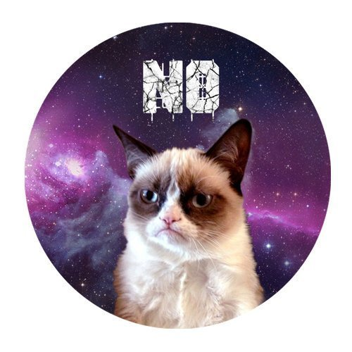 Grumpy Cat Galaxy Space Personalized Round Mouse Pad 250mm*300mm (Space Mouse Pro Wireless)