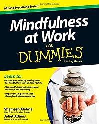 Mindfulness at Work For Dummies by Shamash Alidina (2014-04-25)