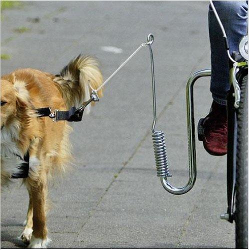Federpuffer - Hunde Fahrradhalterung Fahrradabstandshalter Fahrradleine Führhalter für Fahrräder Fahrrad Halterung