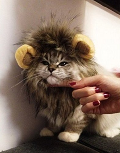 Little Cute Pet Clothing Lion Mane Wig Cat Christmas Christmas Halloween Costume Festival Fancy Dress Up (One Size) (brown)