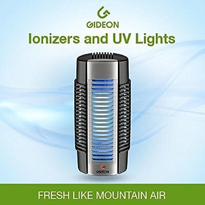 GideonTM Electronic Elektrischer Lufterfrischer mit UV Luftdesinfizierung, Ionen-Luftreiniger und Gebläse - Permanenter Filter - Eliminiert alle Bakterien, Gerüche, Allergene und Schadstoffe