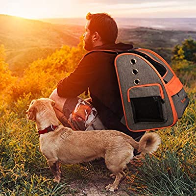 Cat Carrier Backpack,Deluxe Cat Canvas Backpack for Small Cats and Puppy, Suitable for Below 6KG - Ventilated Design, Two-Sided Entry, Safety Features and Cushion Back Support - for Outdoor Use by Legendog