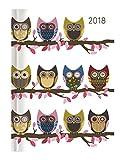 Ladytimer Owls 2018 - Taschenkalender A6 - Weekly - 192 Seiten