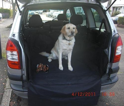 landrover-range-rover-sport-02-heavy-duty-car-boot-protective-waterproof-liner-cover-great-for-pets-