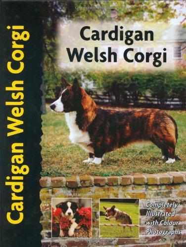 Cardigan Welsh Corgi (Petlove)