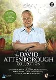 The David Attenborough Collection [DVD]