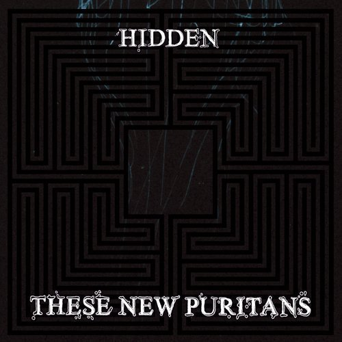 Hidden [+1 Bonus] by These New Puritans (2010-01-12) (Japan Puritan)