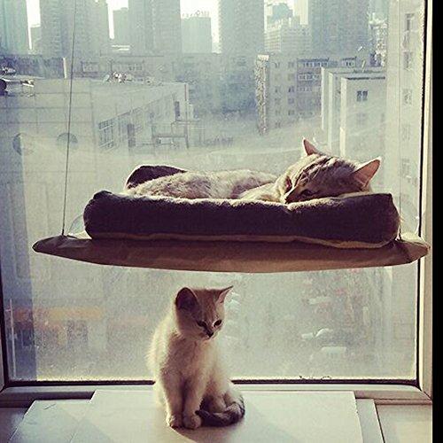 Demiawaking 20kg amaca di gatto letto montato a finestra telaio del letto dell'animale domestico seduta per mensola