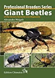 Giant Beetles of the Genera Dynastes and Megasoma, englische Ausgabe