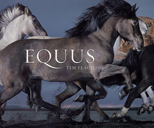 Equus (Mini) by Flach, Tim (2015) Hardcover