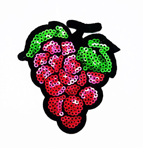 rabana Grape Fruit Pailletten Glanz glänzend Cartoon Kids Kinder Cute Animal Patch für Heimwerker-Applikation Eisen auf Patch T Shirt Patch Sew Iron on gesticktes Badge Schild (Trauben Kind Kostüme)