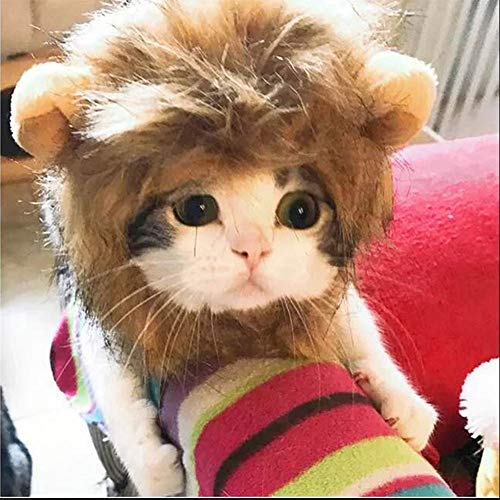 ZLALF Haustier Kostüm Löwe Cosplay Für Hunde Katze Halloween Karneval Mit Ohren,M -
