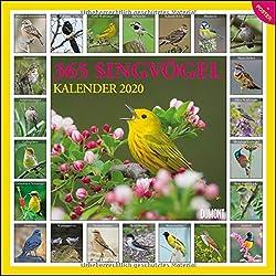 365 Singvögel 2020 - Broschürenkalender - Wandkalender