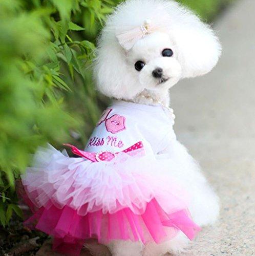 raylinedo® Fashion Cute Hund Katze Kleidung Pet Weste Puppy bedruckt T Shirt in Rot Größe XS - Pet-kleidung Bandana