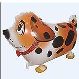 HuntGold Dotted Hunde Motiv Ballon-Party Dekoration Geschenk-(Orange)