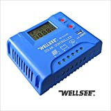 Autoswitch Cargador Regulador de carga solar PWM Panel solar Charge Controller 40A 12/24V