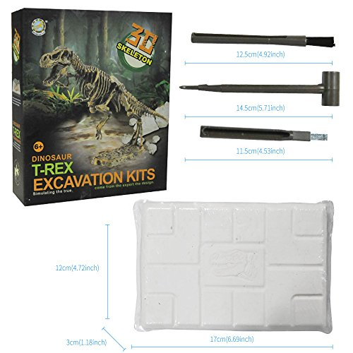 3D Skeleton Dinosaur T-Rex Excavation Kits