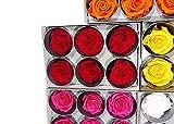 6 Echte, Konservierte Rosenköpfe; Blütenfarbe Rot