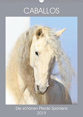 Caballos - Die schönen Pferde Spaniens (Wandkalender 2019 DIN A3 hoch): Begeben Sie sich auf eine kleine Reise und entdecken Sie die faszinierenden ... (Monatskalender, 14 Seiten ) (CALVENDO Tiere)