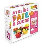 Scrapcooking 3991 Ma Pâte à Sucre Coffret Atelier Ingrédients Multicolore 19,8 x 20,5 x 7 cm